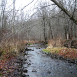 Land Conservancy merges with Little Beaver Creek Land Foundation