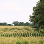 Land Conservancy: Farmland losses will mount if conservation tax incentive isn't restored