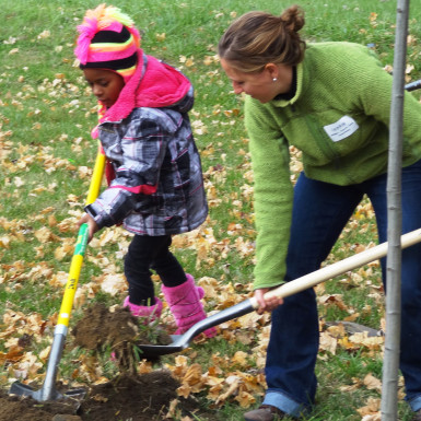 Reforest Our City