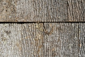 Poplar bark siding is durable and never needs to be treated.