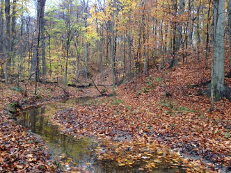 Geauga Oasis - Western Reserve Land Conservancy