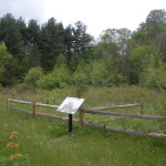 221 acres of Hiram College's James H. Barrow Field Station permanently preserved through partnership
