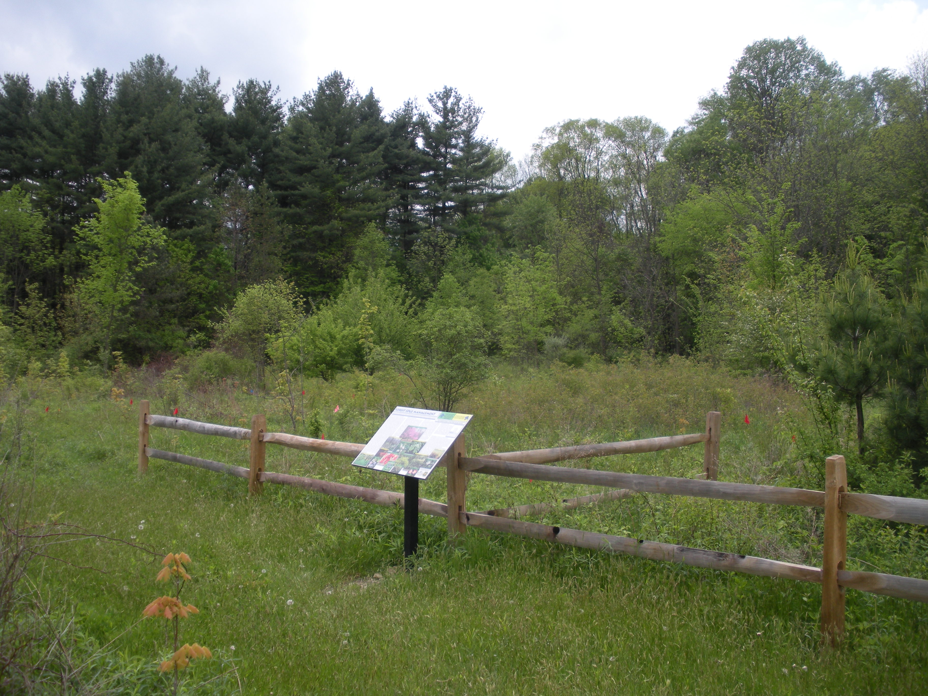 221 Acres Of Hiram College S James H Barrow Field Station