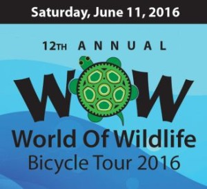 WOW Ride 2016