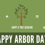 Tree Seedling Giveaways: Species Information and Planting Instructions
