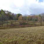 Land Conservancy permanently conserves second Richland County property
