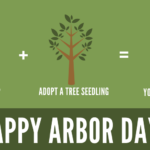 Adopt a tree seedling this Arbor Day!