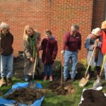 Trees planted in North Collinwood to honor Senator Voinovich