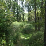 Tinker's Creek Conservation Corridor Expands