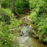 287 acres conserved in Richland County through Western Reserve Land Conservancy's acquisition of the newly established Niss Waterfall Preserve