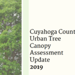 Updated Urban Tree Canopy Assessment Reaffirms Critically Low Tree Cover in Northeast Ohio