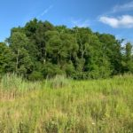 Solon Creekside Lot - 5 Acres