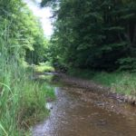Conservation Properties For Sale