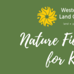 Nature Field Day for Kids - May 24