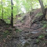 42 acres of conserved farmland and forested ravines in Lorain County